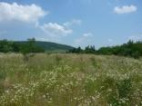 BELLA Real Estate ponúka na predaj krásny pozemok vo Vinohradoch