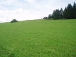 BELLA Real Estate ponúka na predaj 80ha ornej pôdy 20km od Trnavy